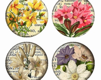 Vintage Floral on Dictionary Page Background Flowers Magnets or Pinback Buttons or Flatback Medallions Set of 4