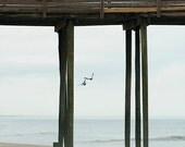 Ocean Photography, Beach Decor, Pier, Seagulls, Sand, Summer Wall Decor, Nautical Wall Art, Nature Photography, Ocean Art - Pier Gulls