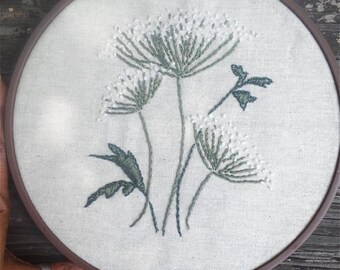 """Embroidery Hoop Queen Anne's Lace Flowers on Unbleached Cotton 8"""" READY TO SHIP"""