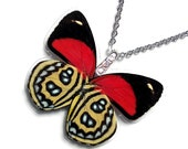 Real Butterfly Wing Necklace / Pendant (WHOLE Callicore Cyllene Butterfly - W045)
