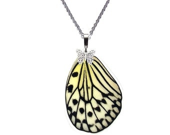 Real Butterfly Wing Necklace (Idea leuconoe Hindwing - N014)
