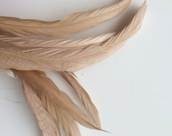COQUE Tail Feathers,  Loose / Beige, Oatmeal / 176