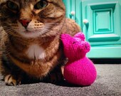 Pinky the Pig Cat Toy