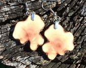 Live Edge Ceanothus Wood Earrings!