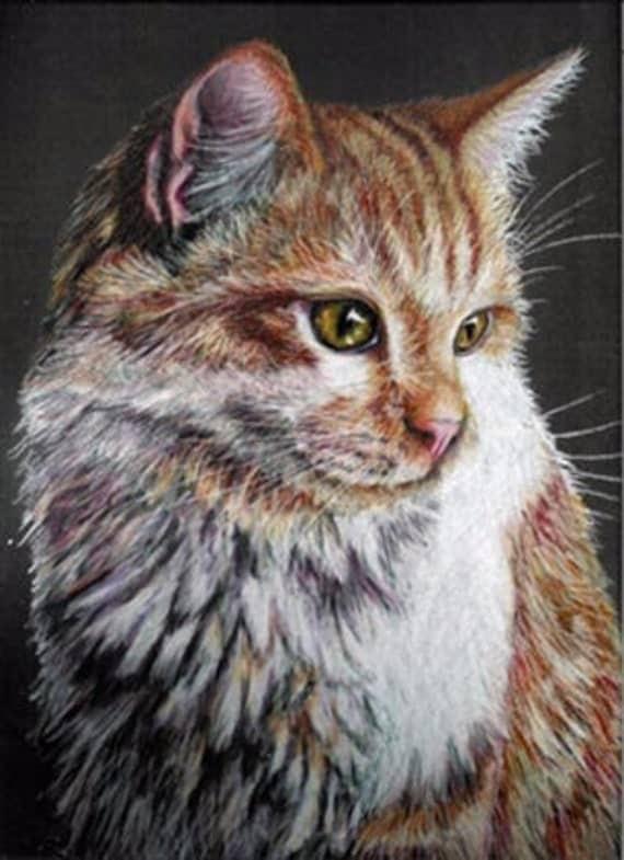Colored Pencil Tiger Cat Drawing