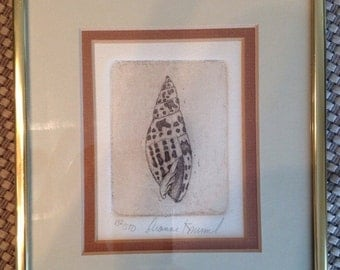 Dianne Krumel etching of Conch Shell, 1970's. 132/500 great condition. Gulf Coast Artist