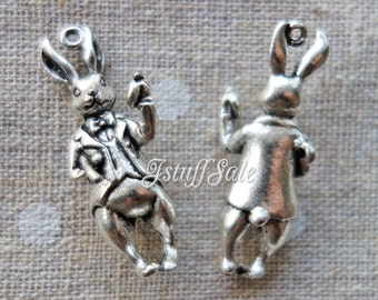 Alice in Wonderland White Rabbit 3D charms 5 pcs (B) - Antique Silver tone