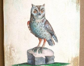 Baby Short-Eared Owl 5x7 art tile
