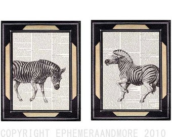 ZEBRAs 2 art prints AFRICAN ANIMALS SAFARI zebra elephant giraffe rhinoceros rhino vintage dictionary book page black white wall decor 8x10