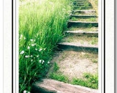 Pathway To The Falls - Nature Photo - Meadow Photo - Photography Card