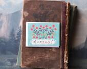 Hooray Planter // Enclosure Card // Fawnsberg Stationery