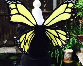 Adult Monarch butterfly wings