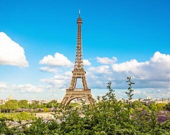 Eiffel Tower Print, Paris Print, Paris Photography, Eiffel Tower Photograph, Paris Decor, Tour Eiffel Fine Art Print, Springtime in Paris