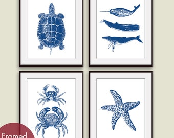 Aquatic Marine Life (Series B) - Set of 4 - Art Prints - (Featured in Hotel Towel on White) Nautical Art Prints / Posters