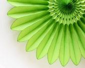 """18"""" Lime Green Flower Fan, Green Tissue Paper Fan, Light Green Honeycomb Fan, Birthday Party, Baby Shower Decor"""