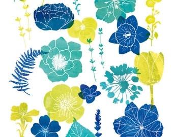 Flower print illustration, Flowers poster, Botanical art