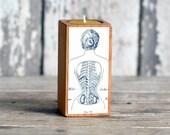 Medical Candleblock: No. 2, Smokestack Corset - by Peg and Awl