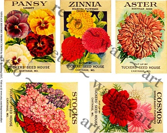 Seed Packs, Vintage Inspired, Garden Decoration, Flower Seed Pack, Collage Clip Art, Sticker Clip Art, Pansy Seed, Home Decor, Wall Art, 347