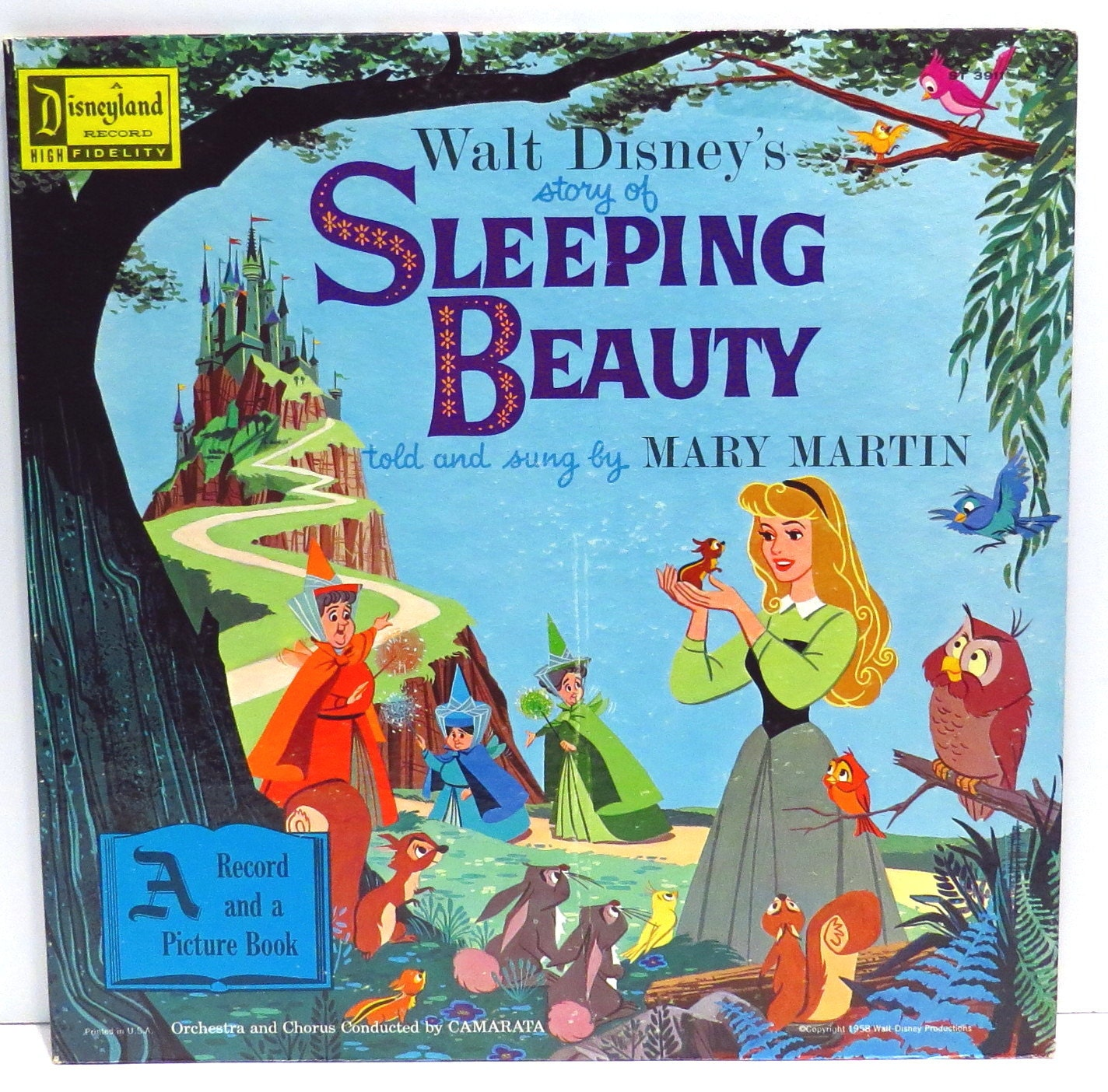 Sleeping Beauty Album Cover Purse Custom Made Vintage Record