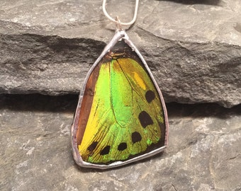 Real Butterfly jewelry, butterfly wing Necklace, emerald birdwing Pendant, insect jewelry, real butterfly pendant, free shipping