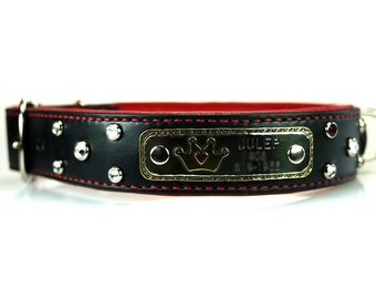 Rhinestone Dog Collar - Leather Dog Collar with Name Plate and Crystals, nameplate pet collar, personalized dog tag, leather dog collar
