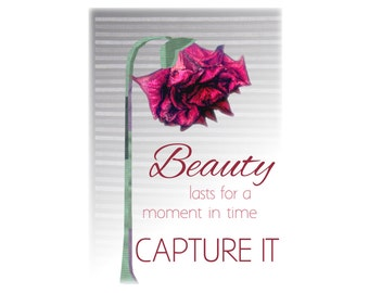 Flower Art Print- Beauty Quote Rose Collage