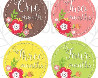 Monthly Baby Stickers Baby Month Stickers Baby Girl Month Stickers Monthly Photo Stickers Monthly Milestone Stickers Bodysuit Stickers
