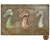 KNOW YOUR DRAGONS (It could save your life!) 11x17 art print