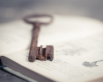 Vintage French Big Skeleton Key Huge Rusty Patina Antique Keys Steampunk Book Mixed Media Country Rustic Romantic Home