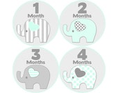 Monthly Baby Stickers, Neutral Monthly Bodysuit Stickers, Monthly Stickers, Baby Month Stickers, Baby Monthly Stickers, Elephants (N056)