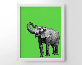 Elephant With Pop Color, Vintage Engraving, Simplistic, Cute, Minimalist, Colorful Office, Kitchen, Home, Nursery Decor, Unique Gift, Poster