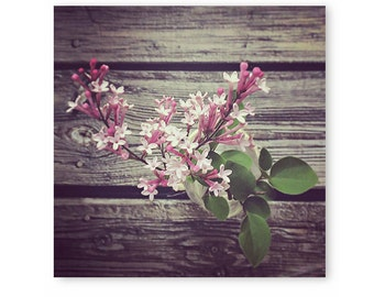 Floral photography, Rustic Flower Photo, floral art, flower print, cottage home decor, nature print, flower photography, floral, wall decor