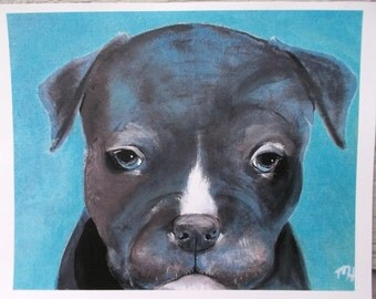 "Pitbull Art Print - ""Poolside"" - Puppy - 8 x 10 - Dog art"