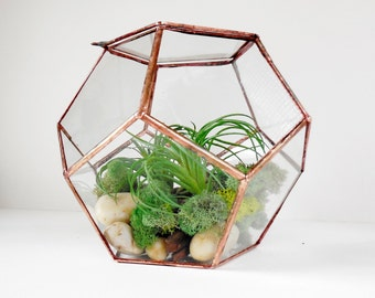 Dodecahedron Glass Terrarium, Terrarium With a Hinged Door, Plant Holder. Made To Order