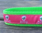 Preppy Pirate dog collar 1 in wide