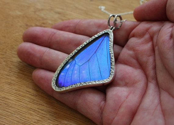 Blue Butterfly Jewelry: Real Butterfly Wing Necklace Blue Morpho Butterfly Silver