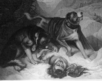 Alpine Mastiffs Reanimating a Distressed Traveller, 1820, by Sir Edwin Landseer