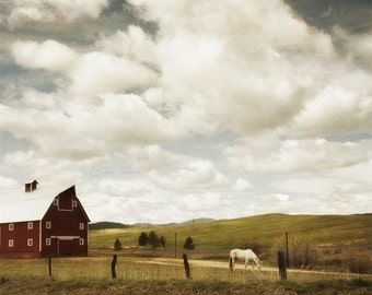 Barn Photography, Farmhouse Decor, Rustic Wall Art, Country Landscape Print, Horse Picture | 'Afternoon Graze'
