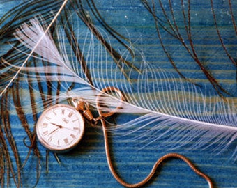 Blue Wall Art Feathers & Time Print in a Range of Sizes
