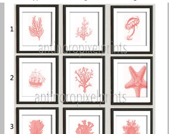 Coral Sea Life Pictures Beach House Costal Wall Art - Set of (9) 8x10 prints Coral White (Unframed) Custom Colors Sizes Available