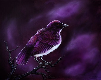 Purple Starling Bird Painting -  Violet-Backed Starling on Branch in Storm Clouds Fine Art by Danielle Trudeau