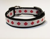 Canada Dog Collar, FREE SHIPPING, Canada, Dog Collar, Maple Leaf, Olympics, Rio 2016
