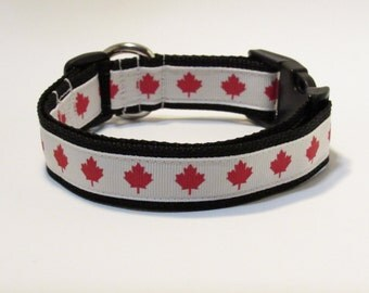 Canada Dog Collar, FREE SHIPPING, Canada, Dog Collar, Maple Leaf