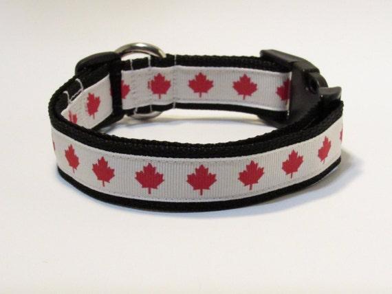 Canada Dog Collar, FREE SHIPPING, Canada, Dog Collar, Maple Leaf, Olympics, Rio 2016