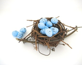 Speckled Bird Eggs