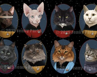 Star Trek: TNG Cats 11x17 Poster