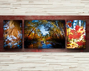 Rustic Idaho Barn Wood Metal Float Photographic Prints