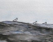Original Maine Watercolor Painting Pen Ink Art Pemaquid Point Rocks Seagulls Home Living Plein Air Landscape Seascape Kathleen Daughan