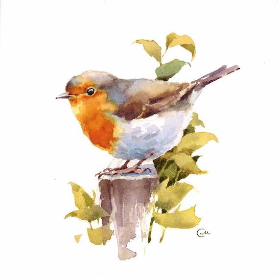 Watercolor robin original bird illustration 7 4 5 x 7 4 5 for Jardin 4 moineaux