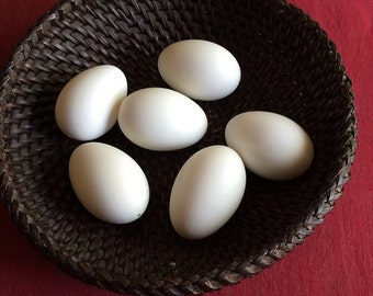 Six Blown Goose Eggs for Pysanky Pisanki Drop Pull Wax Emboss Jewellery Carving Decor Photography Decopuche Etching